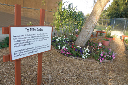 Bell Gardens School Based Gardening Expands To Montebello Eastern Group Publications Egpnews