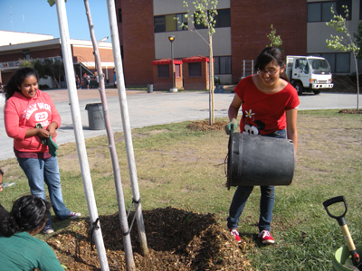 environmental club at a high school Q: i'm thinking about starting an environmental club in my middle school can you  give me some ideas about how to start can you connect me.