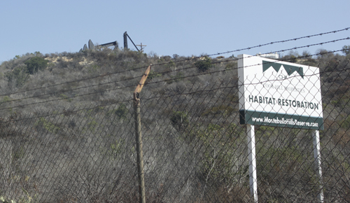 "The Montebello Hills Project property is currently home to oil extracting ""crickets."" (EGP photo by Nancy Martinez)"