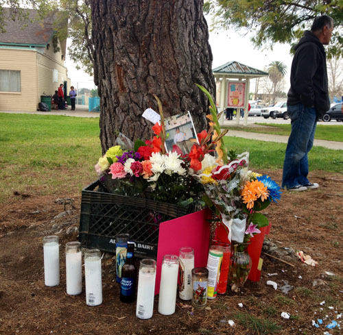 A small memorial was placed by a tree in Salazar Park in East L.A. where 'Chuy' was killed Monday. (EGP photo by Jacqueline Garcia)